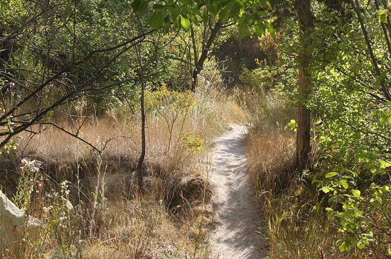 Так выглядит тропа на одном из участков долины.