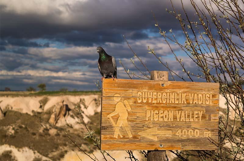Указатель в долину Голубятен на смотровой площадке около Учхисара.