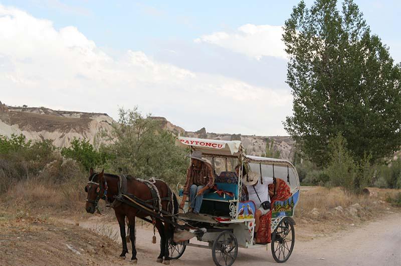 Недалеко от Чавушина в долине Мескендир катают туристов на таких повозках.