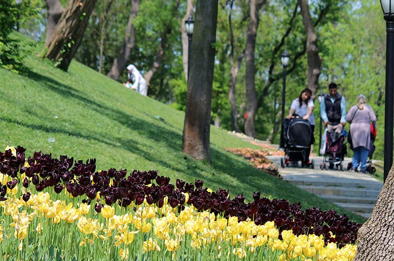 Парк Эмирган в конце апреля.
