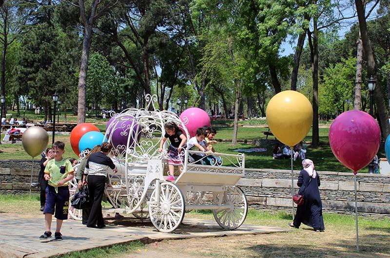 Знаменитая карета парка.