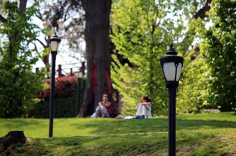 Отдыхающие на лужайках парка.