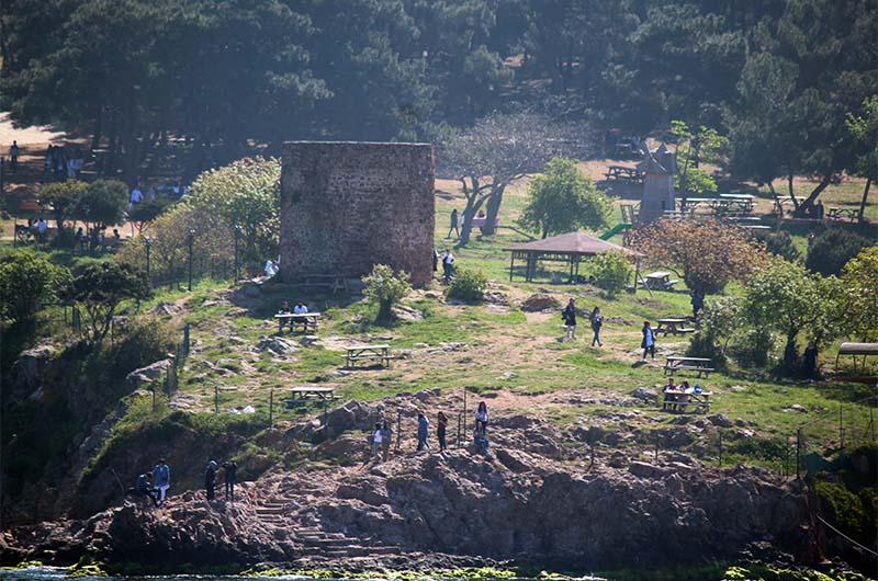 Хорошее место для пикника на острове расположено в там, где находятся руины мельницы.