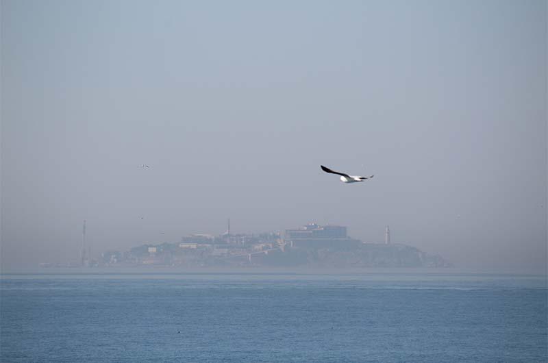 В лучшем случае вы только так сможете увидеть остров Ясиада, когда плывете на городском пароме. Он вдалеке и в дымке.